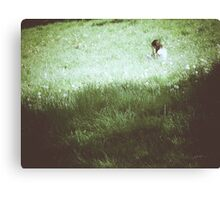 Within grass Canvas Print