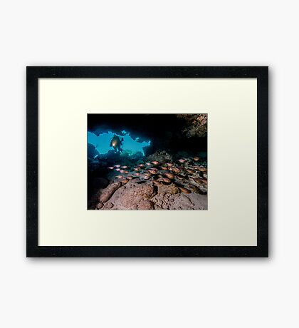 Diver in Cavern With School of Fish Framed Print