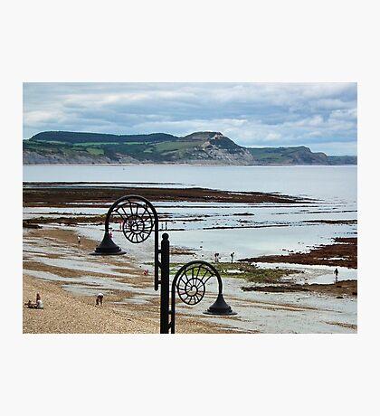 Low Tide At Lyme Regis Photographic Print