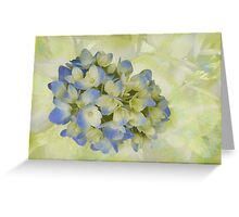 Hydrangea Blue and Soft Butter Greeting Card