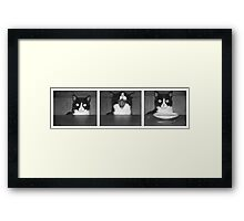 patience is a virtue Framed Print