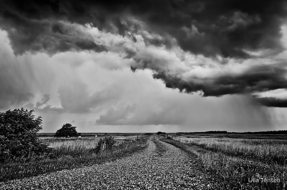 The gravel road by Ulla Jensen