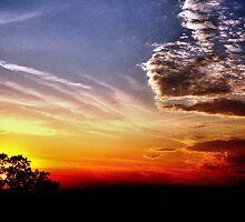 Summer Night in Texas by Thomas Eggert