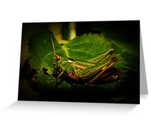 Hopper - Grasshopper Greeting Card