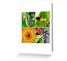 Little things of nature Greeting Card