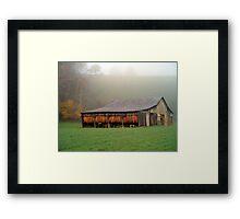 Burley Tobacco Framed Print