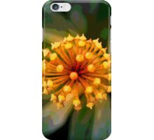 Abstract 2399 iPhone Case/Skin