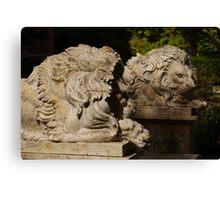 Let Sleeping Lions Lie Canvas Print