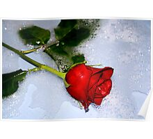 A Rose can say it Best Poster