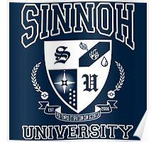 Sinnoh University Poster
