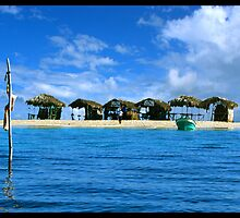 Paradise island by Beetroot06