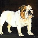 English Bulldog by Charlotte Yealey