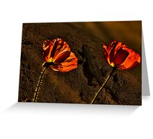 Красные маки  - Red Poppy Greeting Card