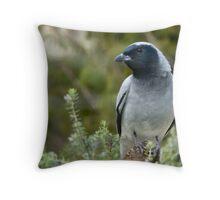 Black Faced Cuckoo Shrike Throw Pillow