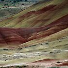 The Painted Hills by Loisb