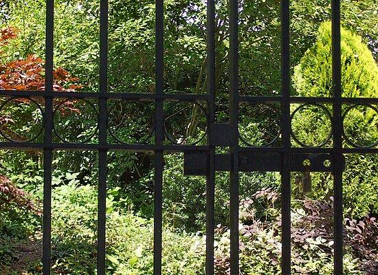 My Secret Garden by Sarah Vernon