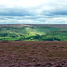 The North Yorks Moors by John (Mike)  Dobson