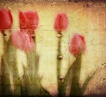 Spring Notes  by Lynda Heins