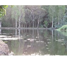 pond in the park Photographic Print