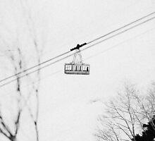 Tateyama Kurobe Gondola in Nagano Japan by Neil Hartmann