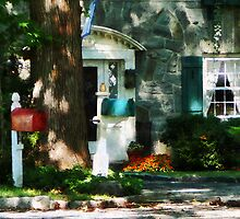 House With Turquoise Shutters by Susan Savad