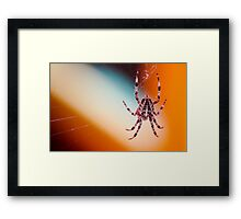 The spider's touch, how exquisitely fine! Feels at each thread, and lives along the line Framed Print
