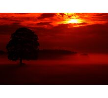 """dawn &the mystical oak"" Photographic Print"