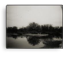 the silence Canvas Print