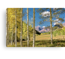 Maroon Bells from a distance Canvas Print