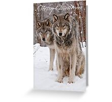 Christmas Card - Timber Wolves Greeting Card
