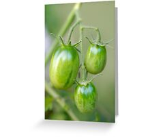 Just a little longer ... Greeting Card