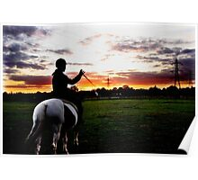 Horse whip shadow Poster