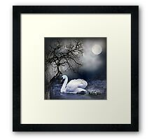 Swans by Moonlight Framed Print