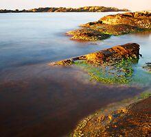 sunrise on the beauty wild coast by plamenx