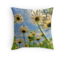 Under II in HDR Throw Pillow