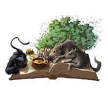 The Jungle Book - The Beginning . ChiaraLamieri Photographic Print