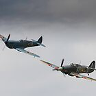 Spitfire and Hurricane by Tony Roddam