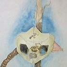 Skull Still Life by egdugan