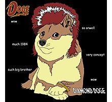 Diamond Doge Photographic Print