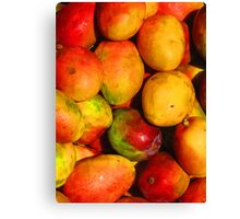 Mango - queen of the tropical fruits Canvas Print