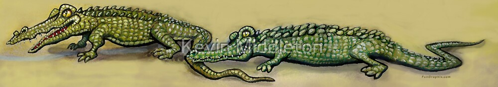Crocodiles by Kevin Middleton