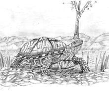 Pet Turtle by Lauren K Nelson