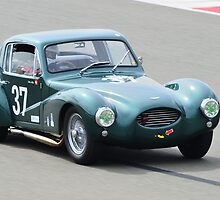 Aston Martin DB3 Coupe by Willie Jackson
