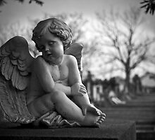 Cherub innocence by Melissa Thorburn
