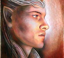 Lord of Rivendell by jankolas