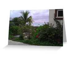 Caribbean Fisherman Greeting Card