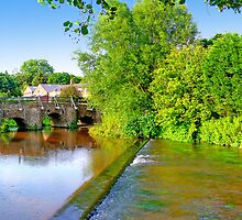 Tilford - The River Wey by Colin  Williams Photography
