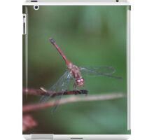 Dragonfly on green iPad Case/Skin