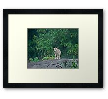 All by myself Framed Print