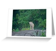 All by myself Greeting Card